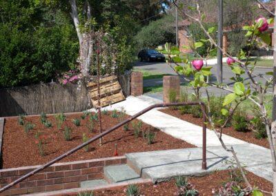 Castlecrag Garden